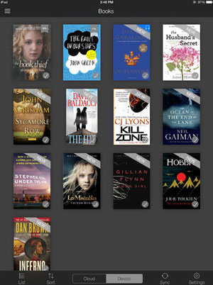 Aplikacja Kindle na iPada